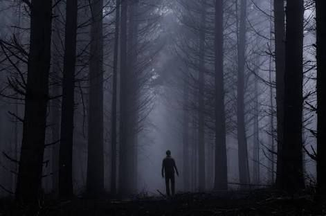 Image result for pictures of shadowy figure in woods