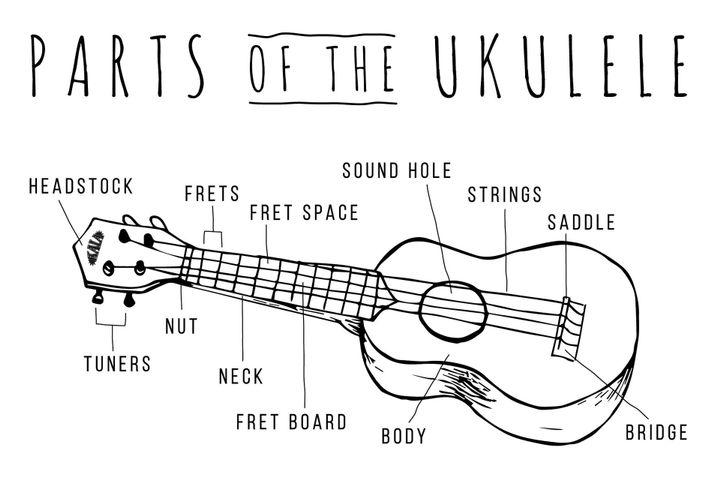 Ukulele Chords With Lyrics Parts Of Ukulele Wattpad