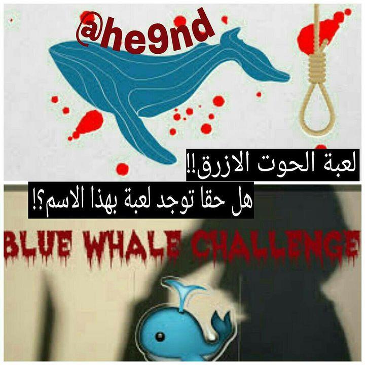 c33f33bcf2ed7 حقيقة لعبة الحوت الازرق!