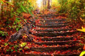 Ben sonbaharı çooook severim (yazarlardan birisi çok sever diğeri yazcı) orda da öz çekim yaptık işte sonbaharın güzelliği