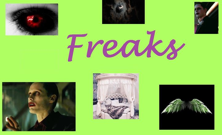 The Joker x Reader Imagines 💚 - Freaks Part 1 - Wattpad