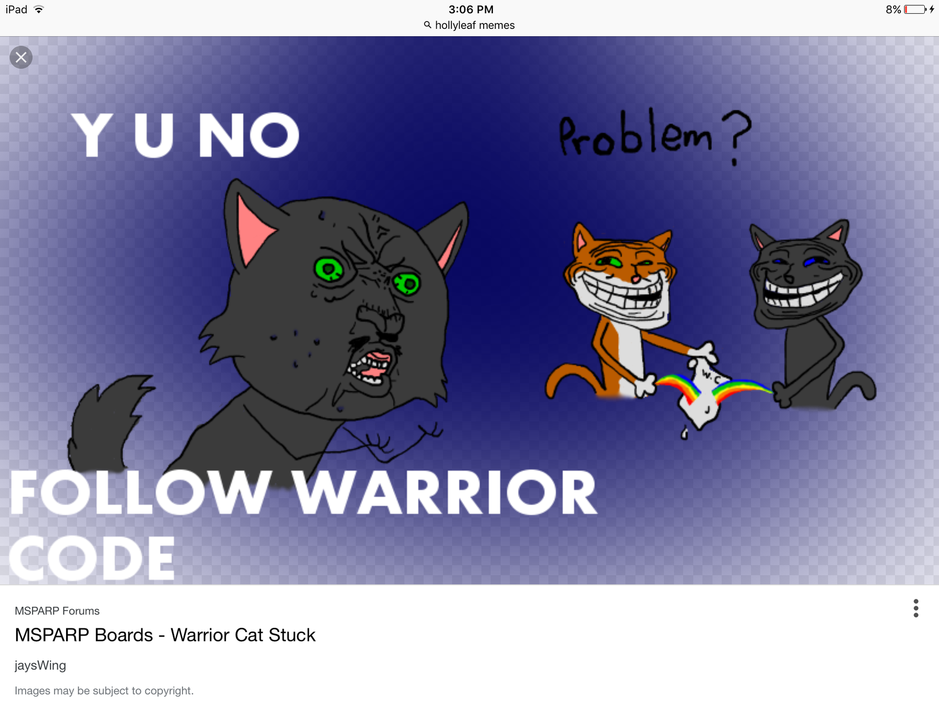 Warrior Memes 3 Hollyleaf Wattpad