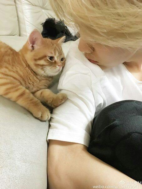 JUNGKOOKhe said goodbye to my cat before we left for Ellen, mom I wanna keep him forever ;-;