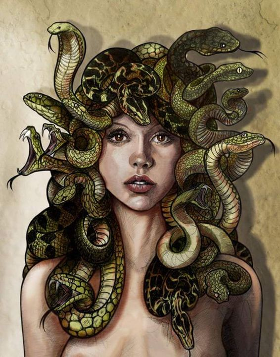 Love for Medusa - Her great love - Wattpad