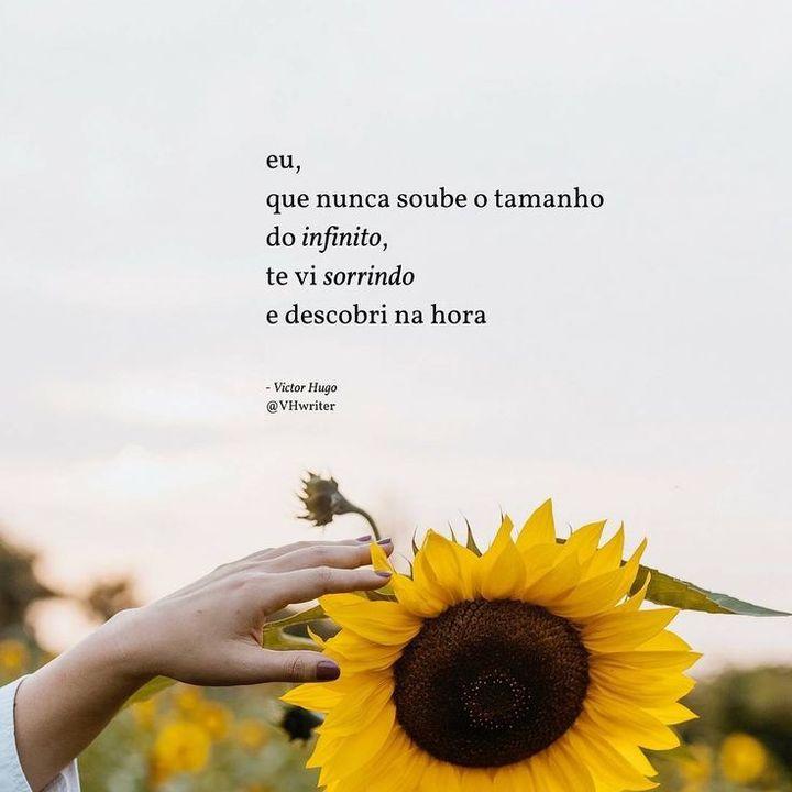 Powerful Sunflower Frases Wattpad