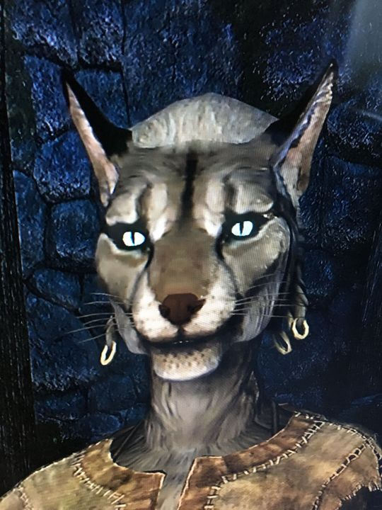 Skyrim's requested maids - Characters - Wattpad