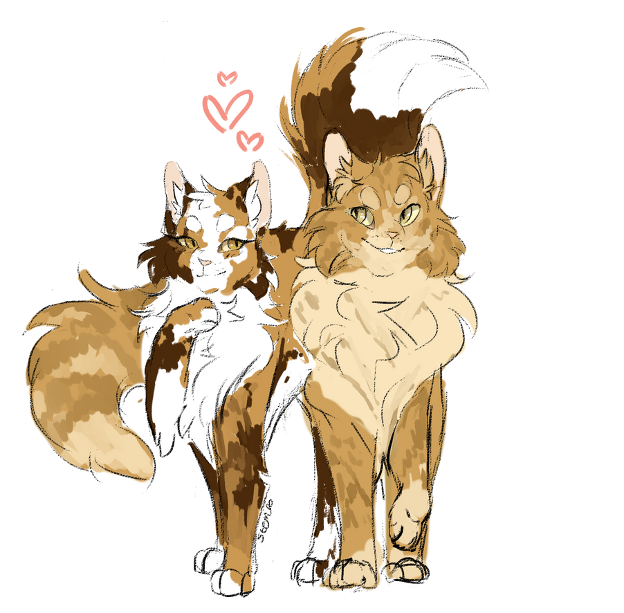 Warrior Cats Ships/Couples - Ship or Sink - Brackenfur x