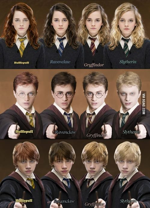 50 Harry Potter Memes - 4  If They Were In A Different House