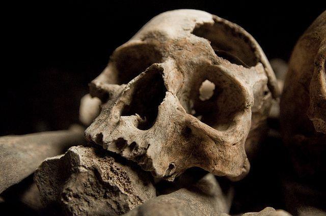 Tego typu odkrycia dokonał między innymi Włodzimierz Szafrański w Płocku, gdzie z fragmentu odkrytego uroczyska (miejsce w głębi puszczy związane z kultem bóstwa, odbywaniem narad lub uważane za siedzibę złych duchów) wydobyto czaszkę dwunastoletn...