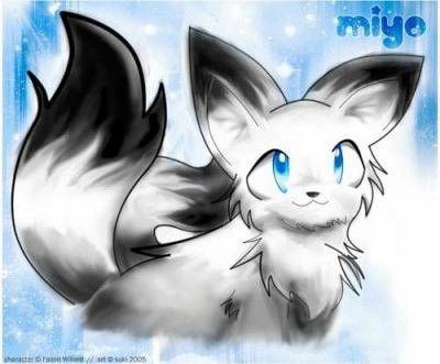 Miyo es una gatita de dos colas con enormes ojos color azul cielo, en la parte de las orejas y al final de las colas es de color negro de ahí todo lo demás es blanco; también se puede transformar en una enorme tigresa que puede lanzar llamas azule...