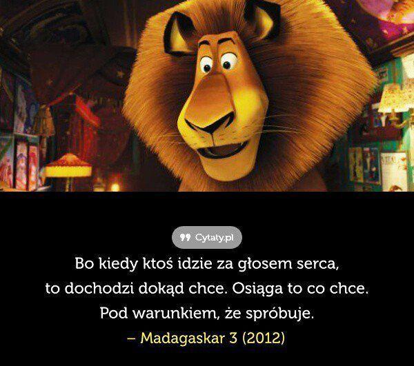 Cytaty Z Filmów Bajek I Nie Tylko Cytaty Z Disneya P Wattpad