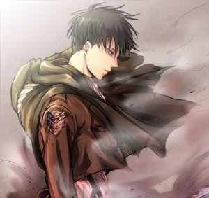 Attack on Titan | xReader One Shots} - {Levi x Reader | Stay