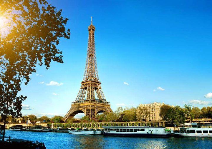 Toddy:Paris