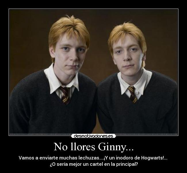 Frases Bonitas De Harry Potter Smartfren V