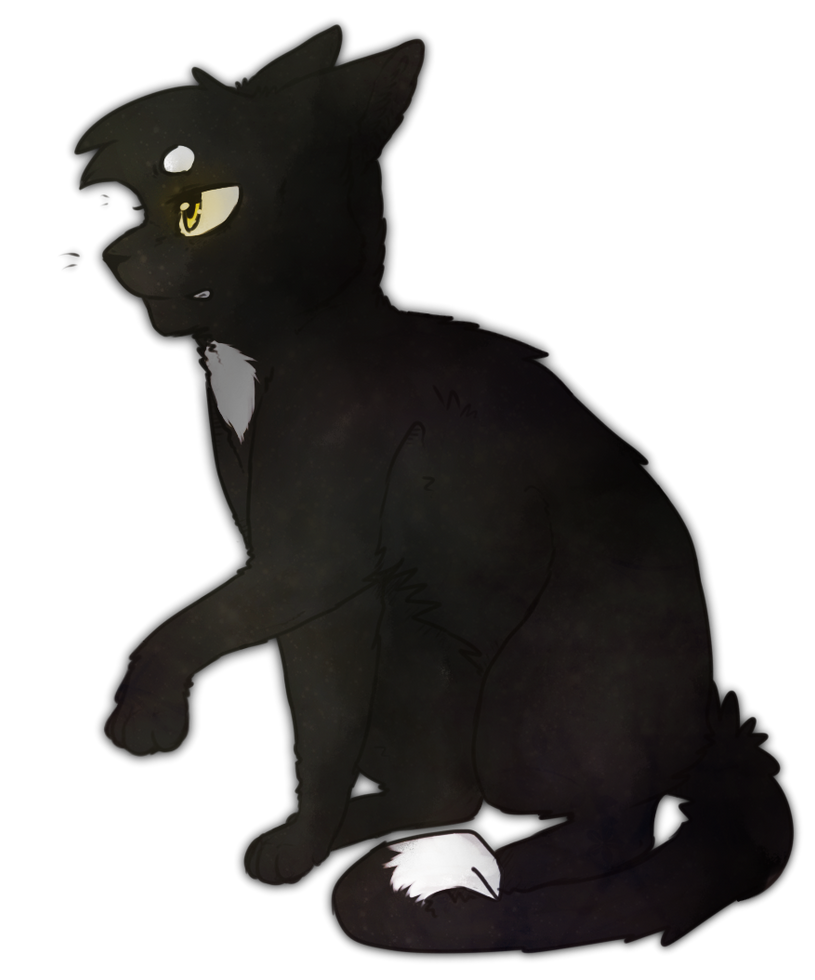 Warrior Cats Love Story Quotev