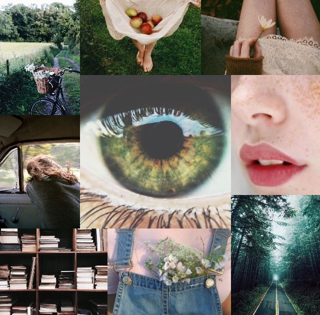 Song: •Diamond dreams-Castro     • these are the days-Zach Winter     • rainbows-Victor Perry