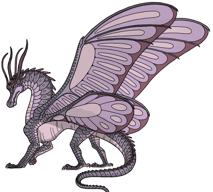 Wings of Fire Ideas! - News! (New tribes, map, prophecy!) - Wattpad