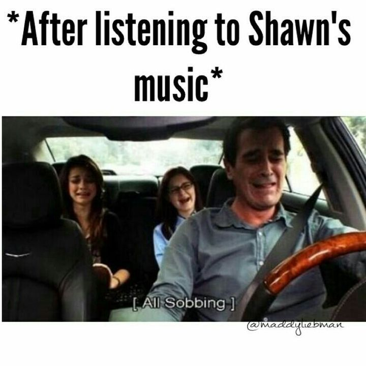 I saw this video with Shawn in it and I think it was called Shawn Mendes vocal but I was crying and laughing and screaming it was a mess
