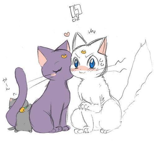 Imagenes De Sailor Moon Terminada Imagenes De Luna