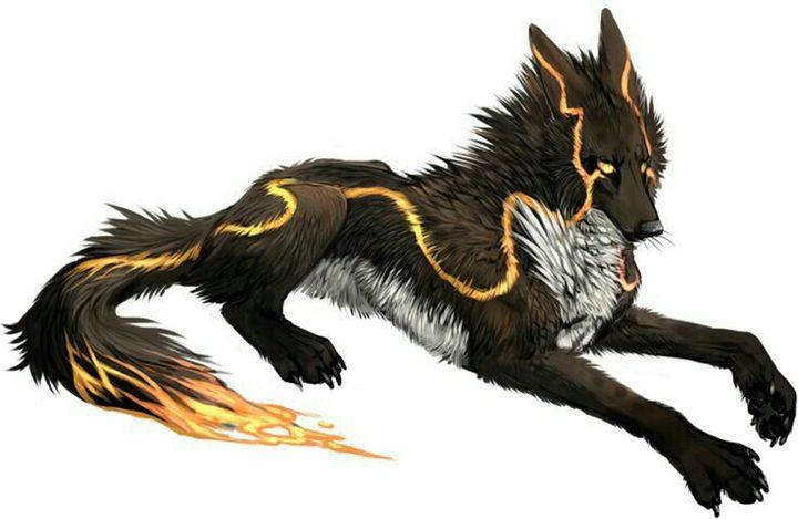 """""""Kimo, mutation du loup-garou, seule une chance sur un milliard de l'être"""