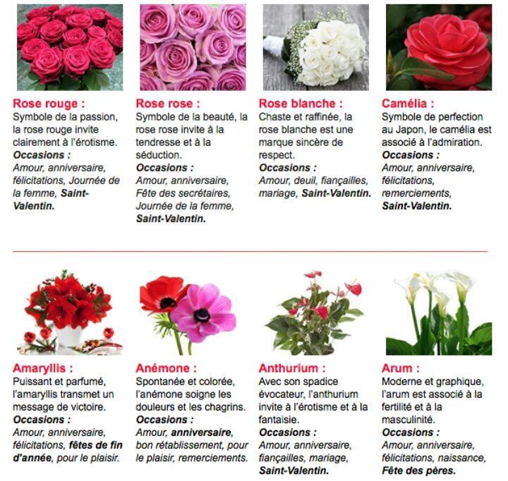Le Livre Des Interprétations Le Langage Des Fleurs Wattpad
