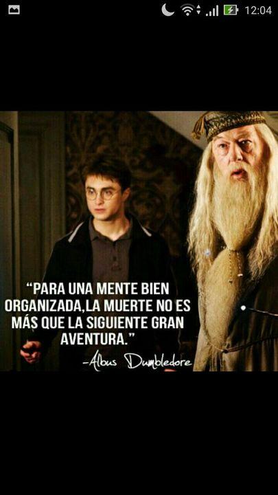 Frases De Libros Frase 1 Harry Potter Wattpad