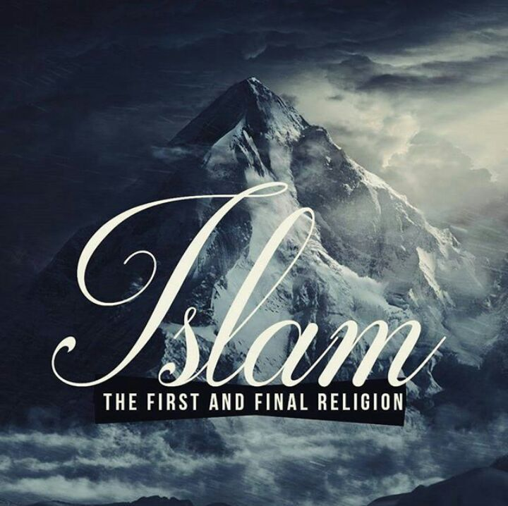 If I make mistake blame me , but not my religion