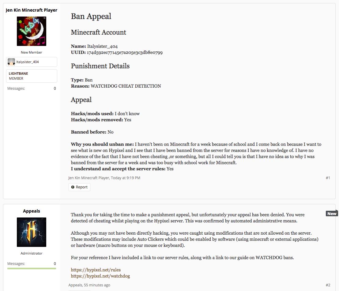 Hypixel Admin Application