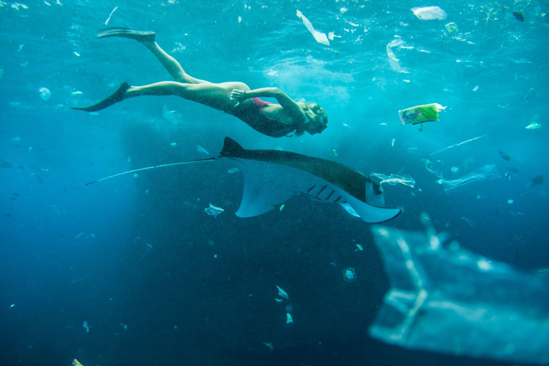 Use your creativity to create an ocean of change by inspiring others to consider the impact of plastics on the planet