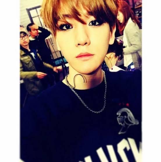 ●Age: 17● Popular● Army/RebeX Fan●Fangirl● (RebeX Baekhyun/BTS V) Bias●Amaizing singer●Has a lot of admirers