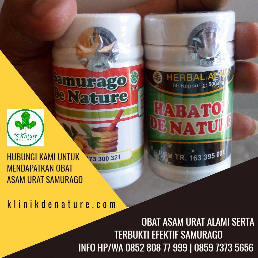 Obat Herbal Asam Urat Samurago Penyakit asam urat atau gout adalah kondisi yang dapat menyebabkan gejala nyeri yang tidak tertahankan, pembengkakan, dan rasa panas di persendian