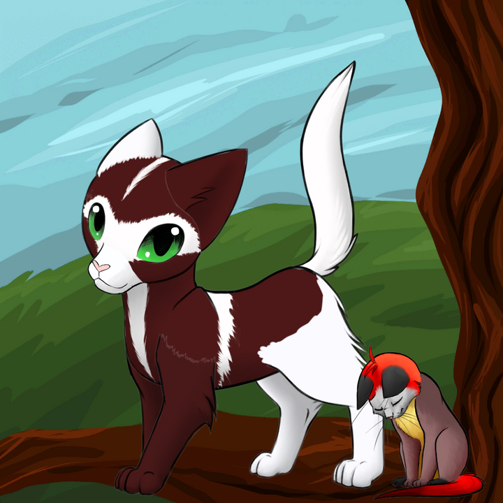 Drawing Your Warrior Cat OC's:Minty's Version - RUBYSTAR