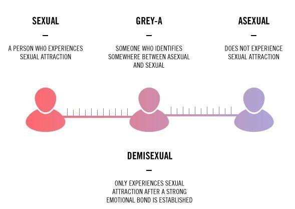 Résultats de recherche d'images pour «asexuality spectrum»