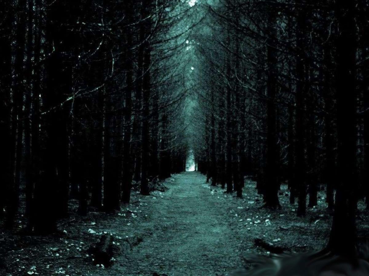 regreso hasta la intersección y todo la gruta del leñador pero a mitad de esta se salio del camino hacia la parte oscura del bosque, un lugar oscuro, llenos de sonidos raros y formas extrañas de los arboles, un lugar terrorífico para cualquiera co...