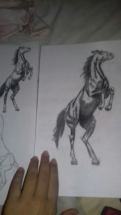 Artbook Cheval Réaliste Wattpad