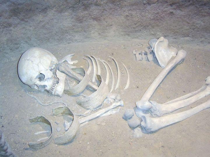 Kajkowski szczegółowo omawia odkrycia ze stanowiska w Kałdusie, gdzie na pozostałościach grzebanych tam zmarłych dorosłych mężczyzn można dostrzec wyraźne ślady skrępowania