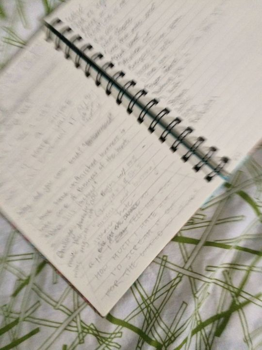 ^It's a bit blurry (on purpose) but that's some of my notes-- I've got more but I don't want too much to be revealed, no do I??