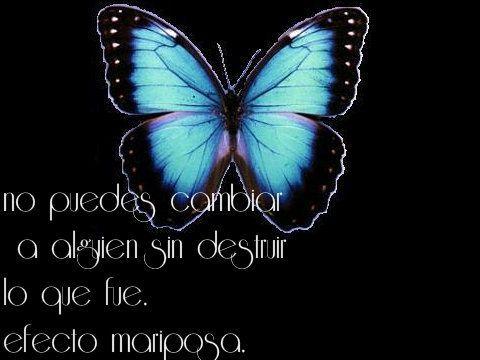 La Frase De La Semana El Efecto Mariposa Wattpad