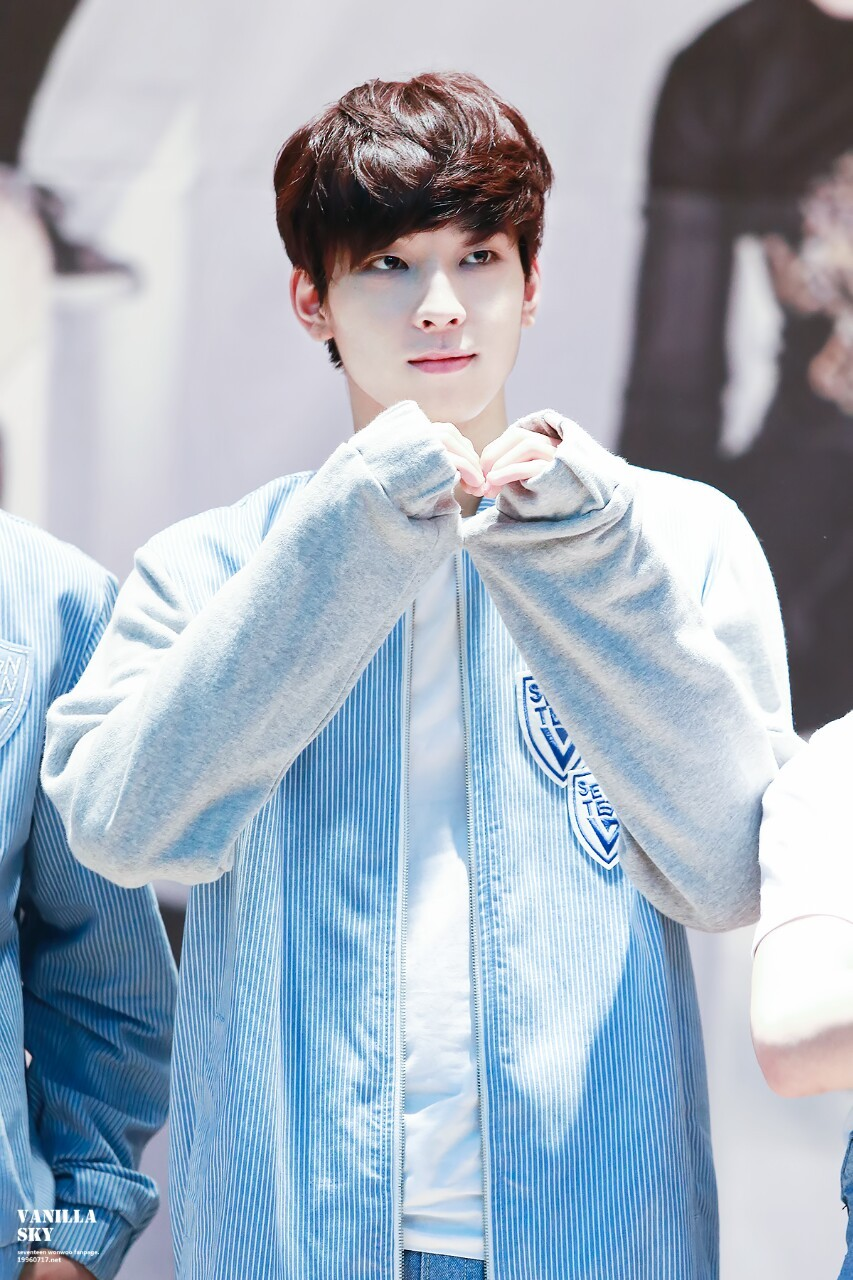 Seventeen Jeon Wonwoo