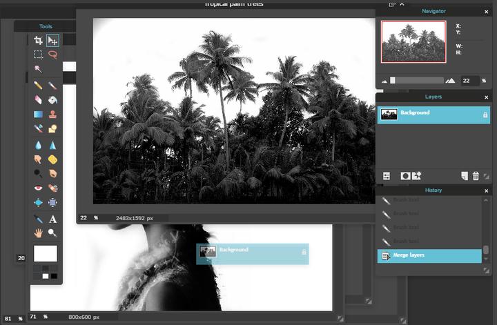 Pixlr Tutorials - [11] double exposure effect - Wattpad
