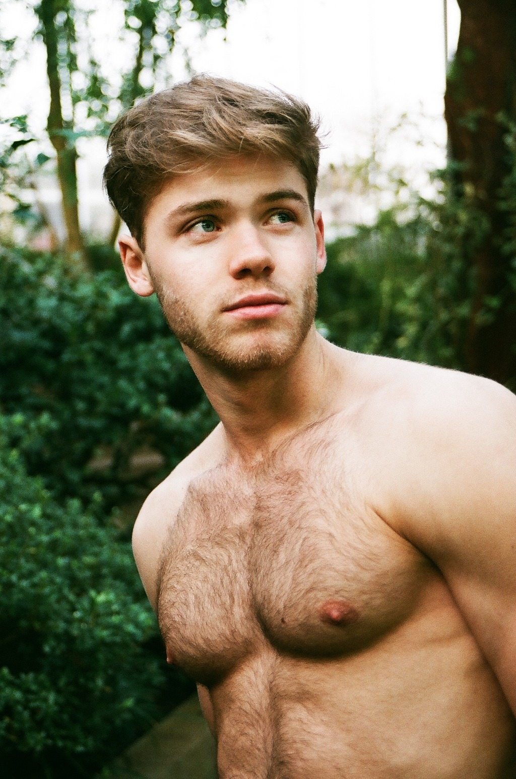 Hairy chest boy