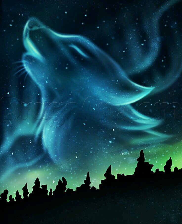 real northern lights wolf - photo #7