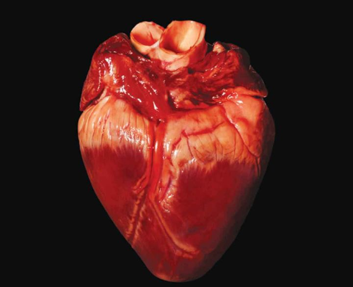 Картинки неровных сердец