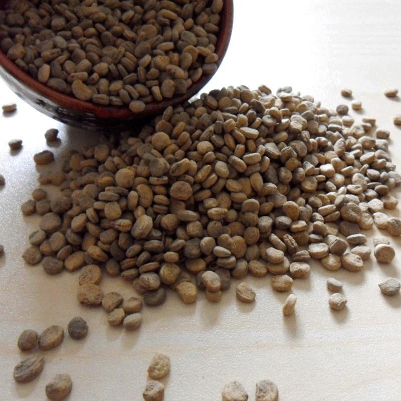 Số lượng ít nhất chính là hạt giống nhân sâm chỉ có ba hạt nhưng mỗi hạt đều rất no đủ so với hạt giống nhân sâm trên thị trường bán thì lớn hơn và màu đậm hơn số lượng đều đều chính là hạt giống hoa có hoa lan mẫu đơn hoa trà và hoa cúc m