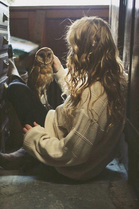 Harry Potter instagram - 55% - Wattpad