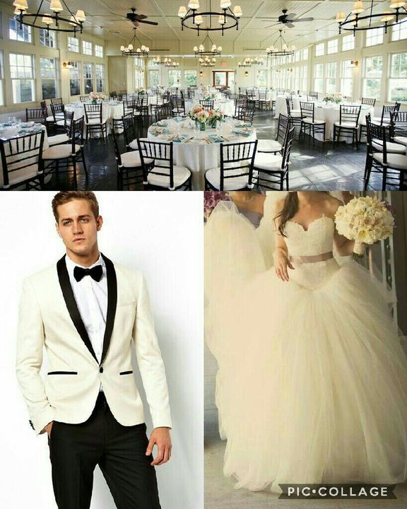 Harry Potter Preferences 0 1 - Your Wedding - Reception