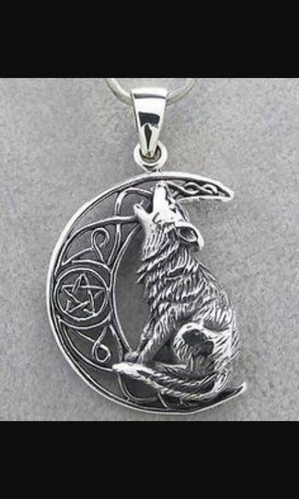 The wolf is your kwami, Snowflake, and here your necklace⬇⬇⬇