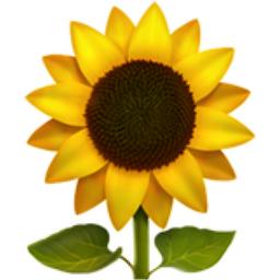 Yellow Aesthetics Completed Yellow Emojis Wattpad