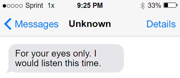 Lindsey looked down, her heart sinking as she realized who the text would inevitably be from