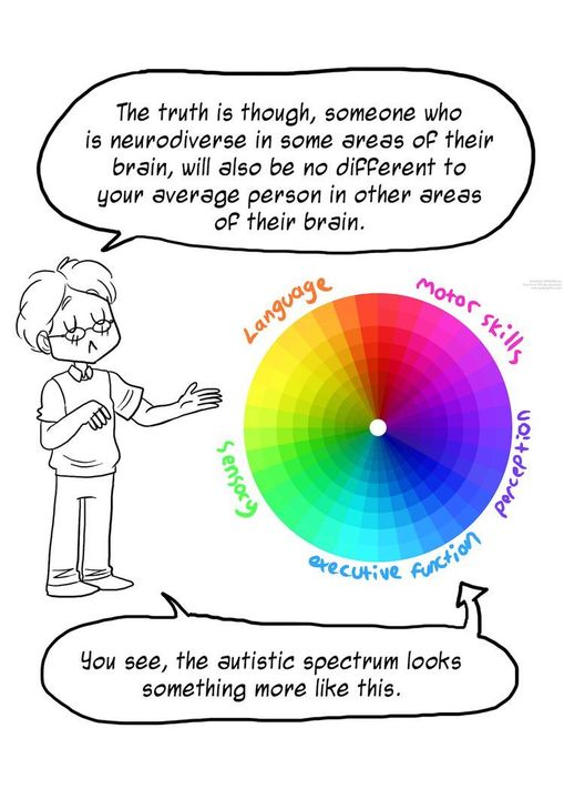 This labeling of the autistic spectrum ignores the fact that it is a spectrum, and instead labels it like a magnet with two separate poles, which is far from the truth